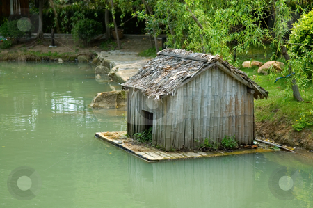 Dwelling of poultry stock photo, The dwelling of goose, small construction of house over pond by Tito Wong
