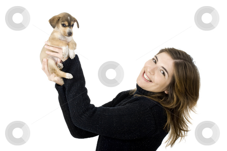 Woman with a puppy stock photo, Portrait of a girl holding a beautiful and adorable puppy by ikostudio