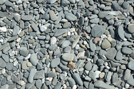 Lots of large gray beach stones close up. stock photo, Lots of large gray beach stones close up. by Stephen Rees