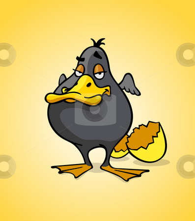 Black duck stock photo, Cartoon style illustration - Black duck by Giordano Aita