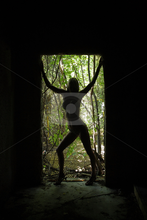 Sexy Blonde in Silhouette (3) stock photo, A beautiful bikini-clad blonde in silhouette stands in a doorway flanked by lush, tropical vegetation. by Carl Stewart