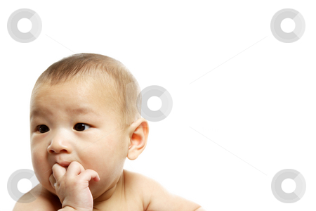 Baby boy stock photo, A cute baby boy posing (isolated white) by Suprijono Suharjoto