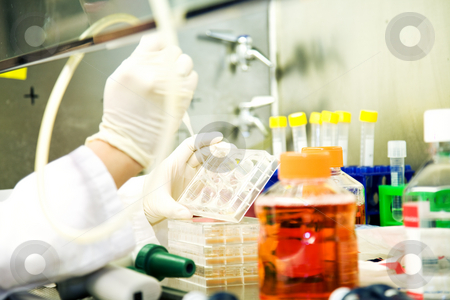 Working scientist stock photo, A scientist working on a sample DNA test at the lab by Suprijono Suharjoto