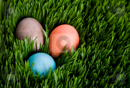 Easter egg stock photo, A shot of an easter egg hidden in grass by Suprijono Suharjoto