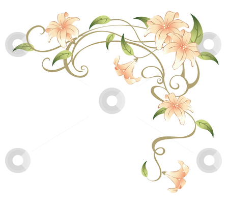 Flower and vines stock photo, Drawing of beautiful flower in a white background by Su Li