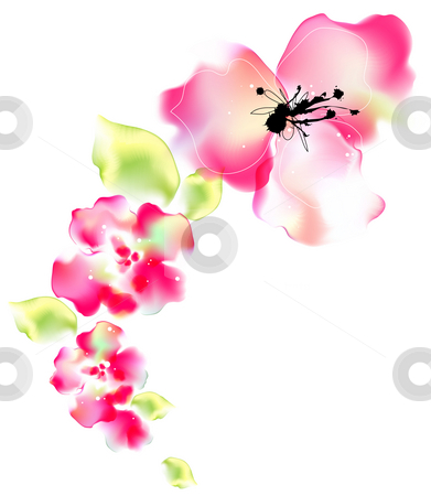 Watercolor painting of flower stock photo, Illustration drawing of beautiful flower in a white background by Su Li