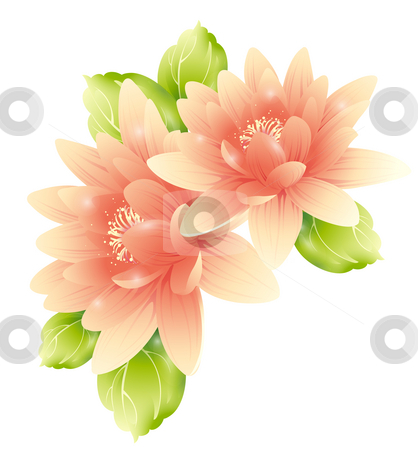 Pink flower stock photo, Illustration drawing of  flowers with green leaves by Su Li