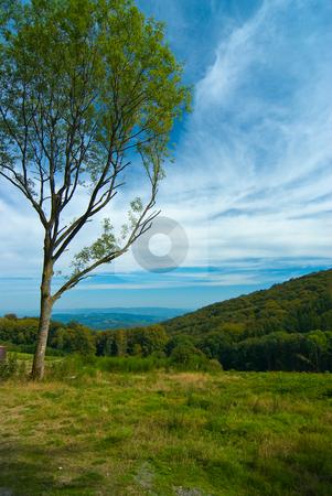 Landschaft im Morvan, Burgund, Frankreich - Landscape in Morvan, stock photo, Burgund (franz?sisch Bourgogne ist eine Region im Zentrum Frankreichs. - Burgundy (French: Bourgogne) is one of the 26 regions of France. by Wolfgang Heidasch