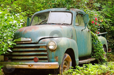 Vintage Truck in a Garden stock photo, This wonderful old truck is being used as a planter, roses are blooming in the bed. by Susan Leggett