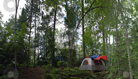 Forest Tent Camping  stock photo, A wide angle panoramic view of a heavily wooded camp site in the Adirondacks. by Todd Arena