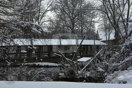Winter Bridge stock photo, Pedestrian bridge over a lake in winter by Ron Johnson