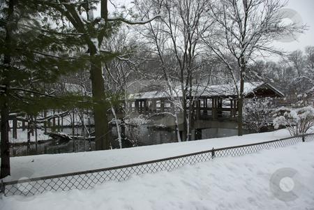 Winter Bridge 2 stock photo, Pedestrian bridge over a lake in winter by Ron Johnson