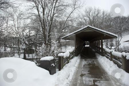 Winter Bridge 3 stock photo, Pedestrian bridge over a lake in winter by Ron Johnson