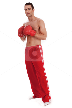 Young Boxer stock photo, Young Boxer full lenth over white background by Get4net 