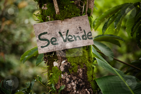 For sale sign in Costa Rica stock photo, Wooden sign announcing real estate for sale in Costa Rica by Scott Griessel