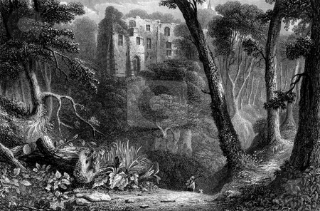 Dunfermline Palace stock photo, Engraving of Dunfermline Palace viewed through forest of Lyme Burn, Fife Scotland. Engraved by William Miller in 1830. by Martin Crowdy