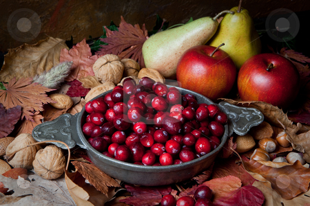 Autumn cranberries and nuts stock photo, Thanksgiving still-life with cranberries, autumn leaves, apples and nuts by Anneke