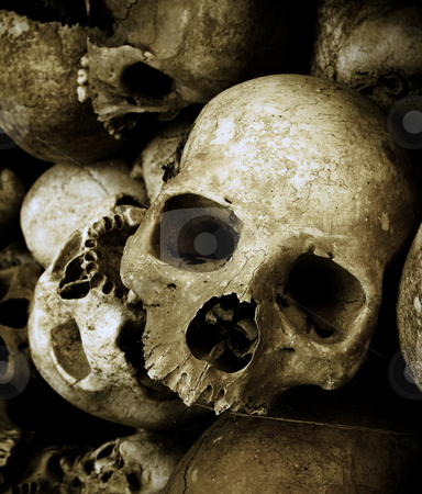 Skulls stock photo, Skulls in cambodia by Charles Taylor