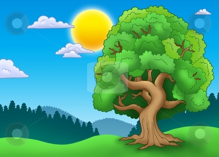 Green leafy tree in landscape stock photo, Green leafy tree in landscape - color illustration. by Klara Viskova