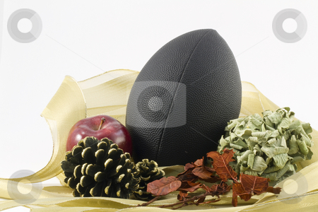Autumn Harvest stock photo, A black foot nestled in gold ribbon combines with autumn objects to depect sport's autumn harvest against a white background by Florence McGinn