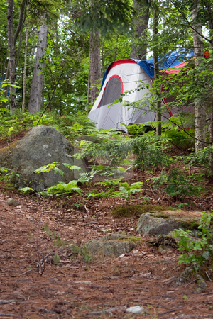 Forest Tent Camping  stock photo, A tent on a heavily wooded camp site in the Adirondacks. by Todd Arena
