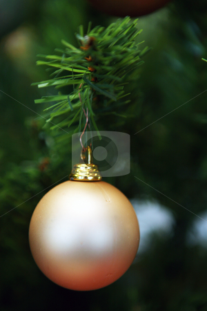 Christmas decoration stock photo, Detail of christmas decoration on christmas tree by Tomas Hajek