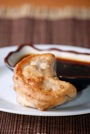 Chinese dumplings stock photo, Pan-fried dumplings by HD Connelly