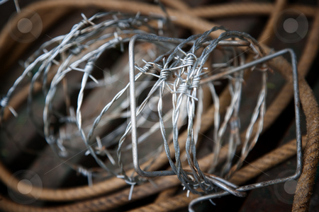 Barbed wire and rope stock photo, Rustic still life of barbed wire and rope by Scott Griessel
