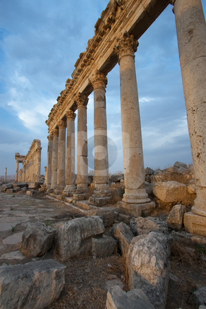 Columns in Aphamia, Syria stock photo, Columns in Aphamia, Syria by B.F.