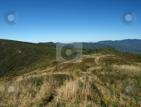 View from the bald stock photo, View along the Art Loeb Trail in the Shining Rock Area of the Pisgah Forest in North Carolina. by Tim Markley