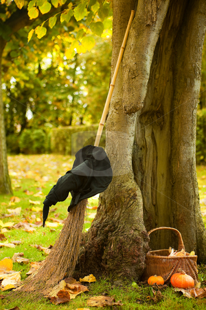 Halloween tree of a witch stock photo, Halloween scene of a witch hat, broom and pumpkin basket against a hollow autumn tree by Anneke
