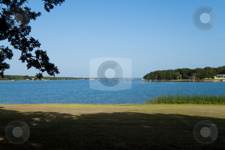 Fishing Lake stock photo, A fishing lake view with several little sticks in the water by Kevin Tietz