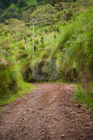 Rugged Road stock photo, Rugged road near Monteverde and Santa Elena in Costa Rica by Scott Griessel