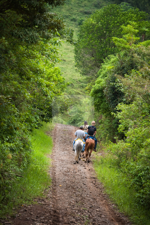Tourists on horseback in Costa Rica stock photo, Tourists on horseback in Costa Rican cloud forest by Scott Griessel