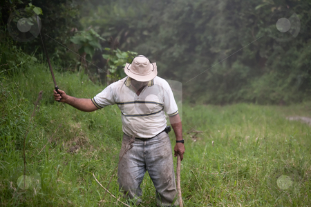 Costa Rican ranch hand stock photo, Costa Rican ranch hand with a machete by Scott Griessel