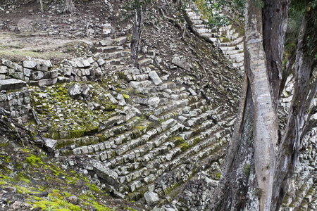 Stairs in ancient Copan stock photo, Ruins of ancient Copan - Honduras by Henryk Sadura