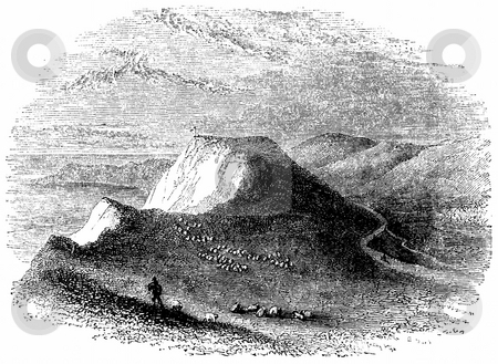 White Clifffs of Dover stock photo, Engraving of shepherd with flock of sheep on hillside, White Cliffs of Dover in background, England. Sourced from 1845 book by Charles Knight,  by Martin Crowdy