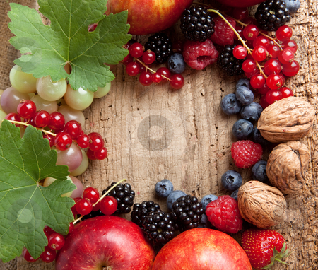 Thanksgiving fruit border stock photo, Border frame for thanksgiving made of fresh autumn fruits by Anneke