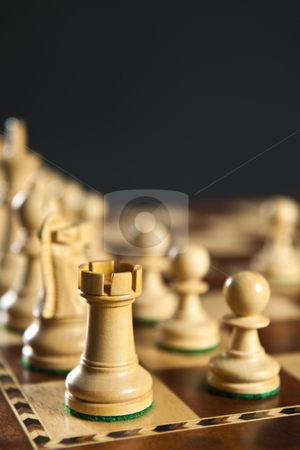 White chess pieces on board stock photo, Close up of white chess pieces on wooden chessboard by Elena Elisseeva