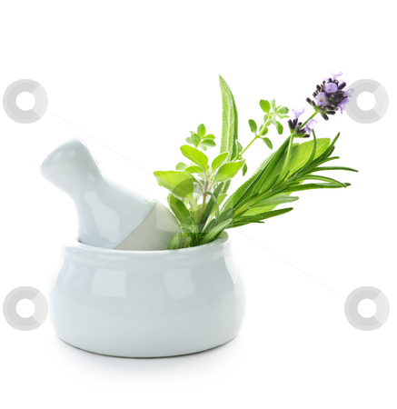 Healing herbs in mortar and pestle stock photo, Healing herbs in white ceramic mortar and pestle isolated on white background by Elena Elisseeva