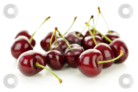 Fresh cherries stock photo, Bunch of fresh cherries on white background by Elena Elisseeva