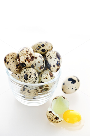 Quail eggs stock photo, Many small speckled quail eggs with one broken egg by Elena Elisseeva