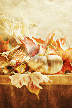 Autumn stock photo, Still life with pumpkin and corn (with texture overlay) by HD Connelly