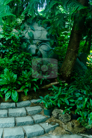 Old Ruins stock photo, Old ruins lost in the jungle by Richard Nelson