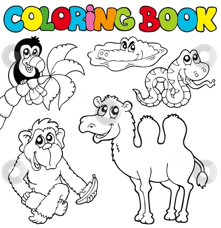 Animals Coloring Book - Starcoloring : the coloring books that