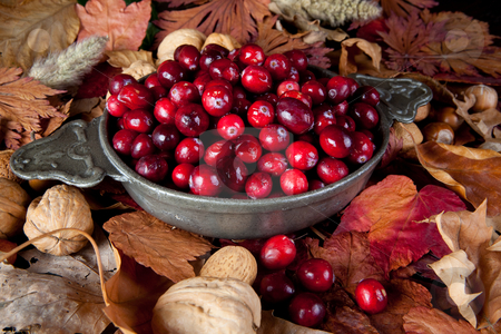 Cranberries in the fall stock photo, Thanksgiving still-life with cranberries, autumn leaves and nuts by Anneke
