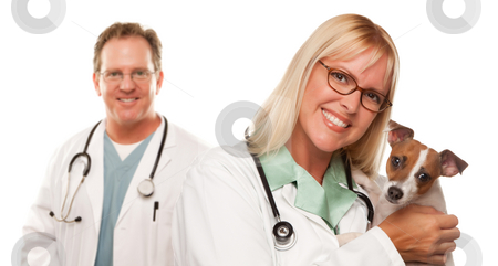 Female Veterinarian Doctors with Small Puppy stock photo, Attractive Female and Male Veterinarian Doctor with Small Puppy Isolated on a White Background. by Andy Dean