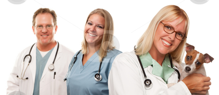 Female Veterinarian Doctors with Small Puppy stock photo, Attractive Female and Male Veterinarian Doctors with Small Puppy Isolated on a White Background. by Andy Dean