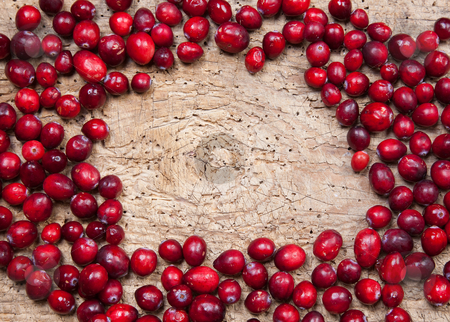 Frame of cranberries stock photo, Border frame made of fresh red cranberries by Anneke