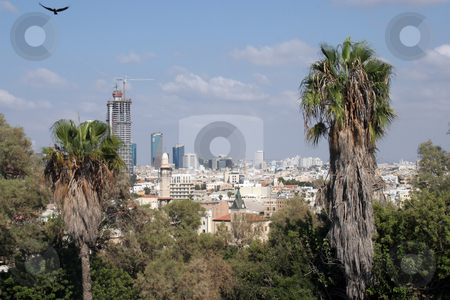 Tel Aviv stock photo, Tel Aviv, Israel by Zvonimir Atletic